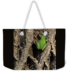 Weekender Tote Bag featuring the photograph Up The Corporate Ladder by I'ina Van Lawick