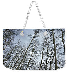 Up Through The Aspens Weekender Tote Bag