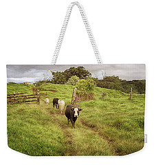 Weekender Tote Bag featuring the photograph Upcountry Ranch by Susan Rissi Tregoning