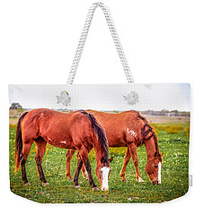 Weekender Tote Bag featuring the photograph V90 Over For Dinner by Melinda Ledsome