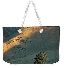 Valley Oak Weekender Tote Bag by Timothy Bulone