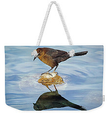 Weekender Tote Bag featuring the photograph Vanity by Elaine Malott