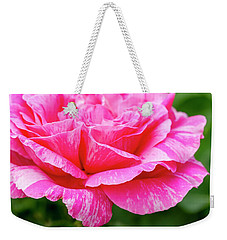 Variegated Pink And White Rose Petals Weekender Tote Bag by Teri Virbickis