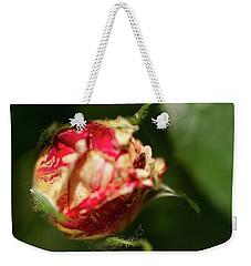 Variegated Weekender Tote Bag