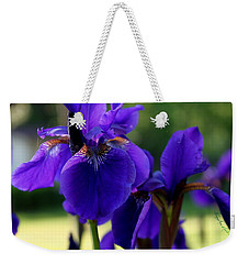 Weekender Tote Bag featuring the photograph Velvet And Silk by Hanne Lore Koehler