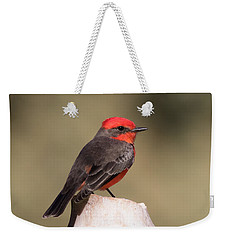 Vermilion Flycatcher In Northern California Weekender Tote Bag