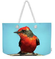 Vermilion Flycatcher - Pyrocephalus Rubinus Weekender Tote Bag