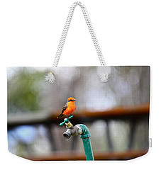 Vermilion Flycatcher Two Weekender Tote Bag
