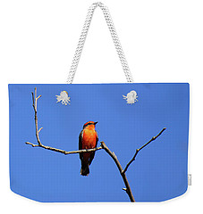 Vermillion Flycatcher Weekender Tote Bag
