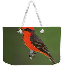 Vermillion Flycatcher With Bee Weekender Tote Bag