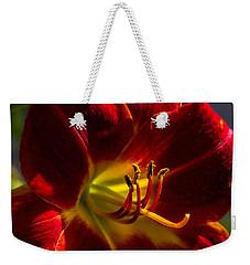 Vermilion Weekender Tote Bag