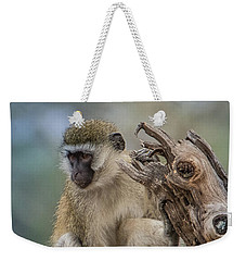 Weekender Tote Bag featuring the photograph Vervet Monkey Just Watching by Janis Knight