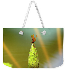 Very Small Dragonfly In Vertical Position Weekender Tote Bag