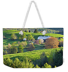 Weekender Tote Bag featuring the photograph Vibrant Spring by Alan L Graham