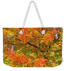 Weekender Tote Bag featuring the photograph Vibrant Sugar Maple by Gary Hall