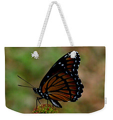 Viceroy Butterfly Weekender Tote Bag by Donna Brown