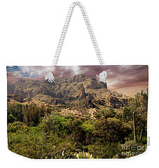View From Boyce Thompson Weekender Tote Bag by Anne Rodkin