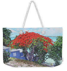 View From Hill Street Weekender Tote Bag
