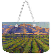 View From The Train Weekender Tote Bag