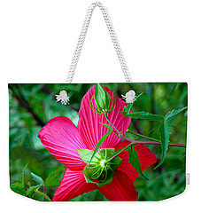 View From Underneath Weekender Tote Bag