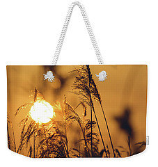 Weekender Tote Bag featuring the photograph View Of Sun Setting Behind Long Grass C by Jacek Wojnarowski