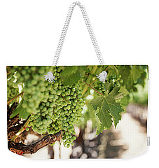 Weekender Tote Bag featuring the photograph Wine Vineyard Of St. Helena - Grapevine Napa Valley Photography by Melanie Alexandra Price