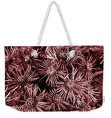 Weekender Tote Bag featuring the photograph Vintage Asters by Danielle R T Haney