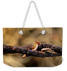 Weekender Tote Bag featuring the photograph Vintage Barbed Wire by Ann E Robson
