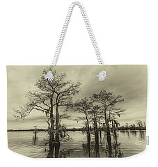 Weekender Tote Bag featuring the photograph Vintage Henderson Swamp  by Andy Crawford