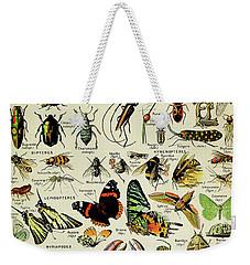 Vintage Illustration Of Various Invertebrates Weekender Tote Bag
