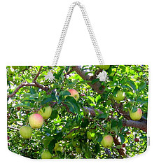 Vintage Tractor In Apple Orchard Weekender Tote Bag
