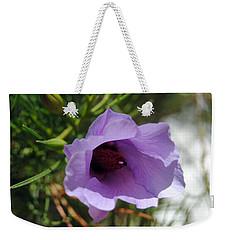 Alyogyne Hakeifolia 2 Weekender Tote Bag