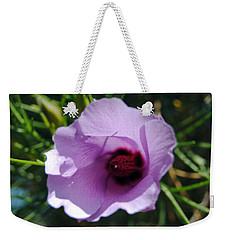 Alyogyne Hakeifolia 1 Weekender Tote Bag