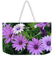 The African Daisy Flowers Weekender Tote Bag