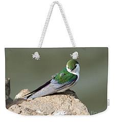 Violet-green Swallow Weekender Tote Bag