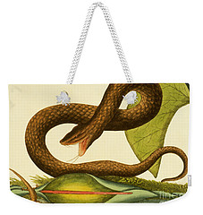 Viper Fusca Weekender Tote Bag by Mark Catesby
