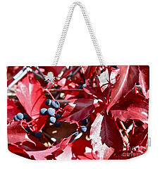 Weekender Tote Bag featuring the photograph Virginia Creeper by Linda Bianic