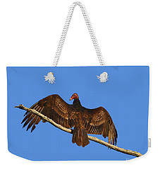Weekender Tote Bag featuring the photograph Vivid Vulture .png by Al Powell Photography USA