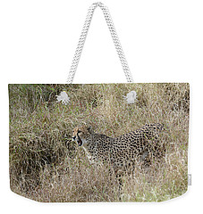 Weekender Tote Bag featuring the photograph Vocalizing by Fraida Gutovich