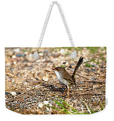 Weekender Tote Bag featuring the photograph Wagtail 0001 by Kevin Chippindall