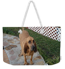 Waiting For Dinner Weekender Tote Bag by Val Oconnor