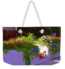 Waiting For Friends Weekender Tote Bag by David  Van Hulst