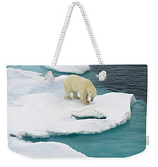Waiting For Seal Weekender Tote Bag
