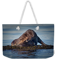 Weekender Tote Bag featuring the photograph Wake Up by Randy Hall