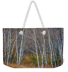 Weekender Tote Bag featuring the photograph Walk In The Woods by James BO Insogna