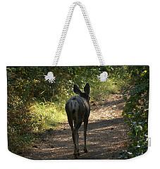 Walk On Weekender Tote Bag