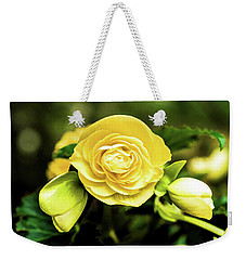 Weekender Tote Bag featuring the photograph Walk On Sunshine by Jessica Manelis