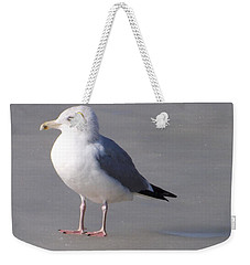 Weekender Tote Bag featuring the photograph Walking On Ice by Sara Raber