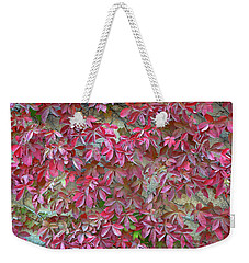 Weekender Tote Bag featuring the photograph Wall Of Leaves 1 by Dubi Roman