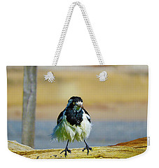 Weekender Tote Bag featuring the photograph Wally The Wet by Mark Blauhoefer